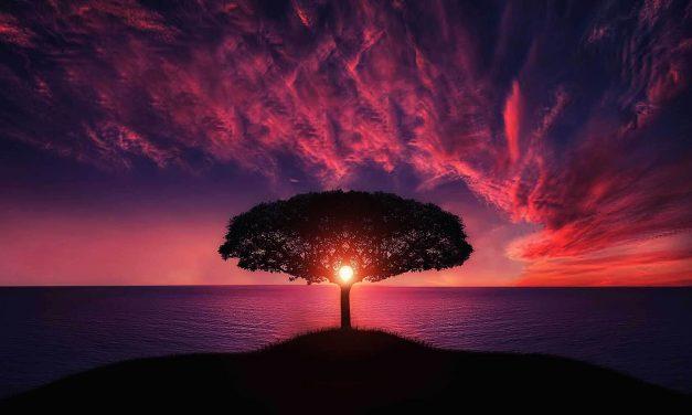 De betekenis van 'laa ilaaha illallaah': niets heeft het recht aanbeden te worden